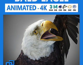 3D model Animated Bald Eagle