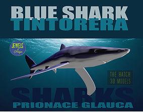3D Blue Shark