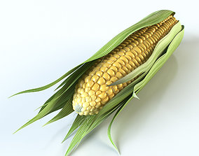3D model Realistic Corn
