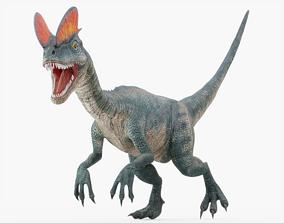 3D asset Dilophosaurus Rigged