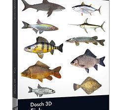Dosch 3D - Fish