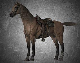 Horse - D9-D10 3D