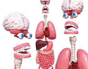 3D model low-poly Internal Organs Low Poly