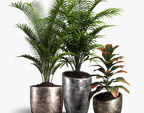 leaf 3D model plants set 09