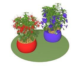 3D model FLOWERS 2 IN 1