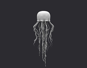 Jellyfish rigged and animated for Maya 3D model