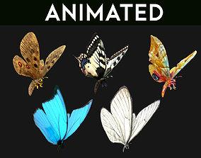 Butterflies 3D model