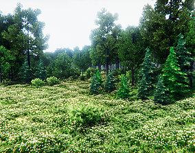 3D model European Vegetation Pack One Unity