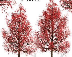 3D model Set of Red Oak or Quercus rubra Trees - 2 Trees
