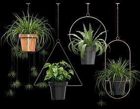 Geometric Plant Flower 3D model