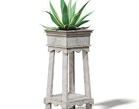 Aloe in Wooden Planter 3D Model