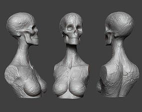 Clay Skull 3D print model
