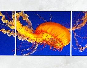 3D asset Triptych Wall Art Pacific Sea Nettle Jellyfish