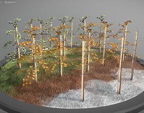 Small Plum Trees 2m all Seasons 3D asset