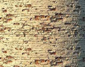 Old painted brick wall 02 3D asset