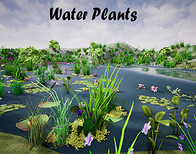3D asset Water Plants for UNREAL