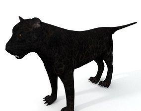 Black Panther 3D asset