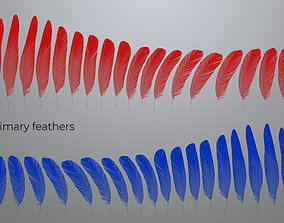 3D Feathers set for Macaw