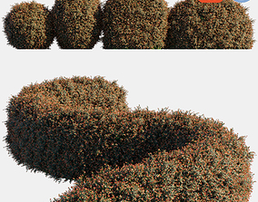 Auto hedge collections 7 3D