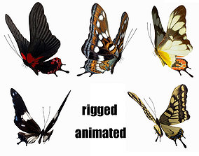3D model animated butterfly scalewing wing fly