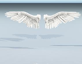 Angel or bird wings 3D