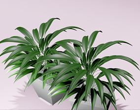 indoorplant plant 3D model low-poly