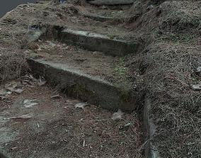 3D asset Photoscanned Outdoor wood steps HD