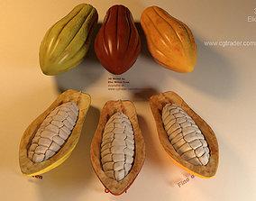 3D Cacao Fruit 3 colors