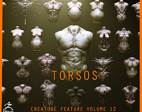 TORSOS - 33 Character and Creature Insert meshes 3D