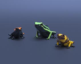 Poison Dart Frogs v3 - Package other 3D model