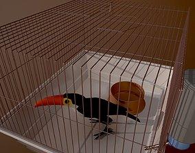 Bird cage house 3D model