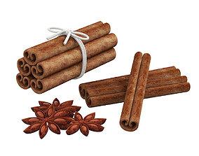 Cinnamon sticks and anise 3D model