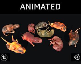 Cub Rat 3D model animated
