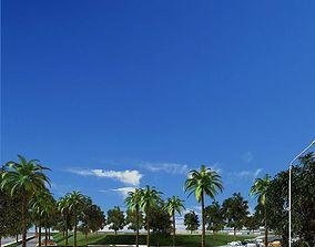 Palms 079 3D