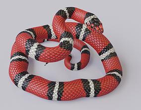 Rigged Scarlet Kingsnake 3D model