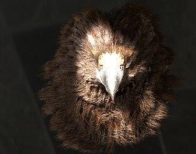 Giant Eagle 3D