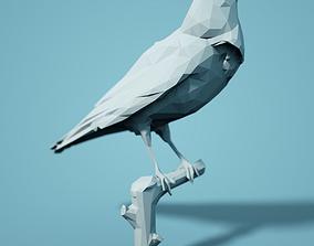 Crow Low Poly Bird Model