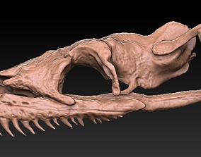 3D Titan Bowa Skull with jaw