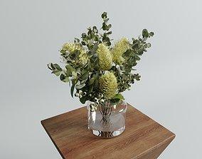 Banksia Vase arrangements set potted 3D model