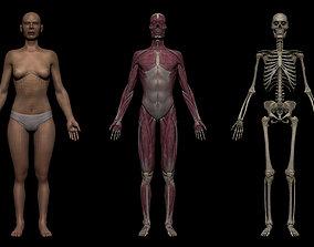 Realistic Female Basemesh Collection 3D model