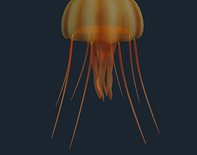 animated 3DRT - Sealife - Jelly FIsh