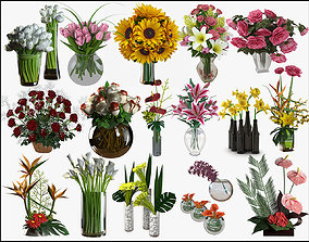 3D model Flower Collection 6