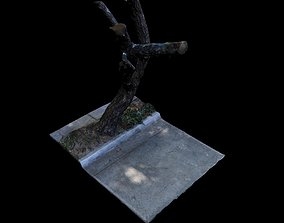 Big Tree scanned 3D model