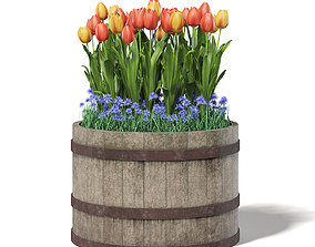 Barrel with Flowers 3D Model