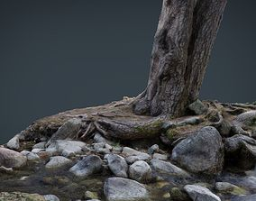 Tree River 3D