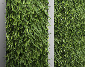 Vertical gardening Fern Wall 3D model