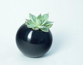 Sfera planter 3D printable model