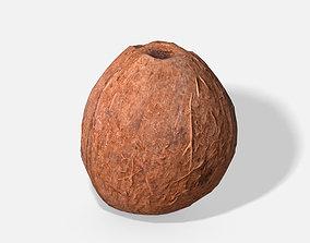 3D model Exotic Fruit Coconut - Photoscanned PBR
