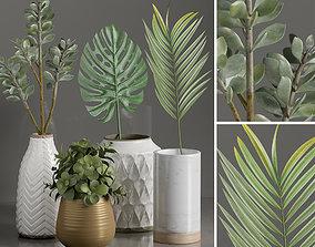 Plants 1 3D