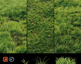 3D model Grass for landscaping exterior